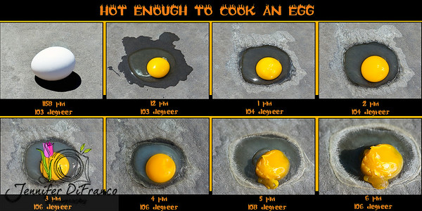 August 4th - Hot Enough To Cook An Egg!<br /> <br /> And it has been.  We are on the 34th day in a row of 100+ degree temperatures.  Not only are we breaking record highs, but the highest - low temp records have been broken as well.  Today was actually a few degrees cooler.  It only made it to 108, however our low was a recorder breaker as well (a high low) it was 86.<br /> <br /> Everyone who knows me knows I love the heat.  I absolutely HATE being cold. For me a picture perfect day would be 95 degrees, sunny, big white fluffy clouds and a slight breeze.  BUT...this is getting to be too much even for me.  The record of consecutive days of 100+ degree days is 42. We aren't supposed to get under 100 until next Friday. If we are at or above 100 degrees next Friday we tie it.  It will be really interesting to see if we break that record.