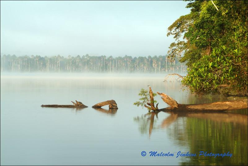 Mistly Morning On Sandoval Lake