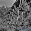 Old Tressel Bridge at Noojee
