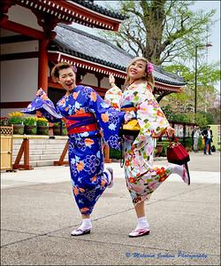 Japan Highlights 2016