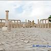 Jerash: Forum Cardo
