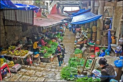 Vietnam Highlights 2013