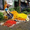 Flower Sellers (3) Reworked