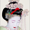 Study of a Geisha (1)