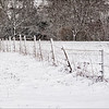 Fencing in Winter