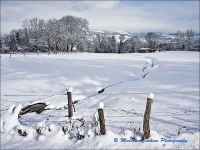 Alps - In The Winter