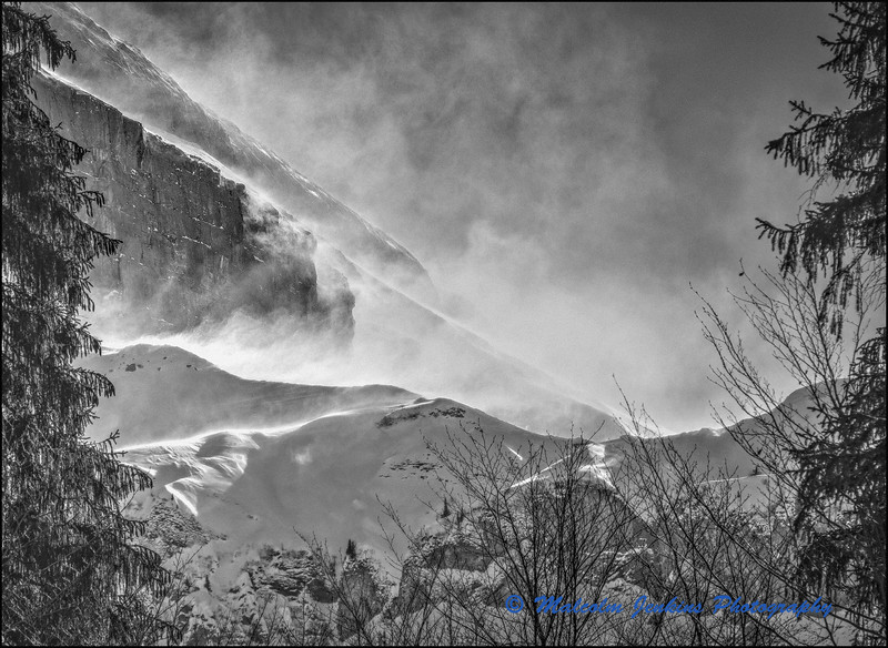 Feel The Cold Blast Of Winter / Sentir le Tempête de Neige