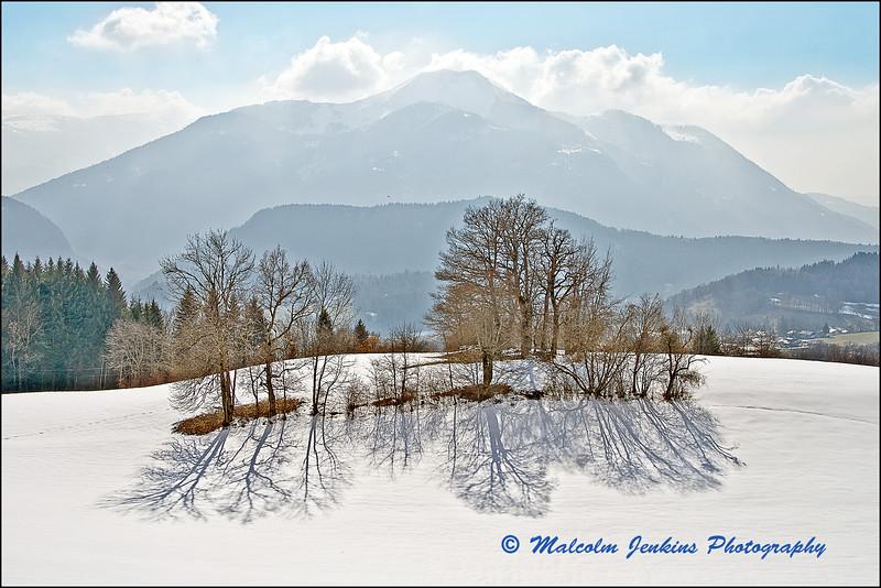 Shadows in the Snow / Ombres sur la Neige