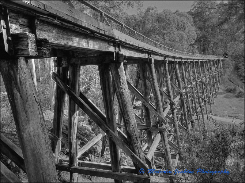 Old Tressel Bridge at Noojee (Left)