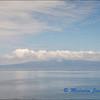 View Towards Fernandina Island