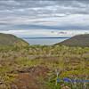 View Back Towards Tagus Bay