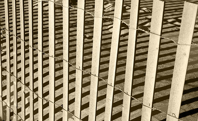 Lines on the Beach