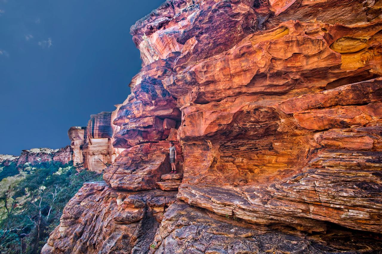 King's Canyon View