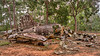 WW II Crash Site Cape York