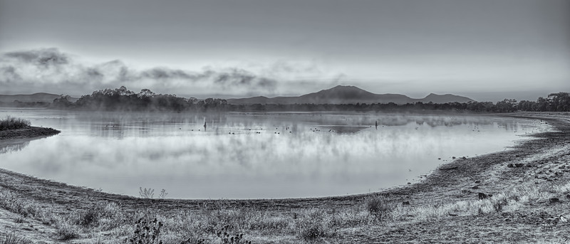 Misty Morning at Green Hill Lake