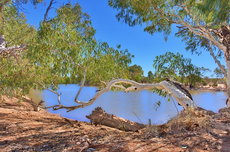 Eringa Waterhole