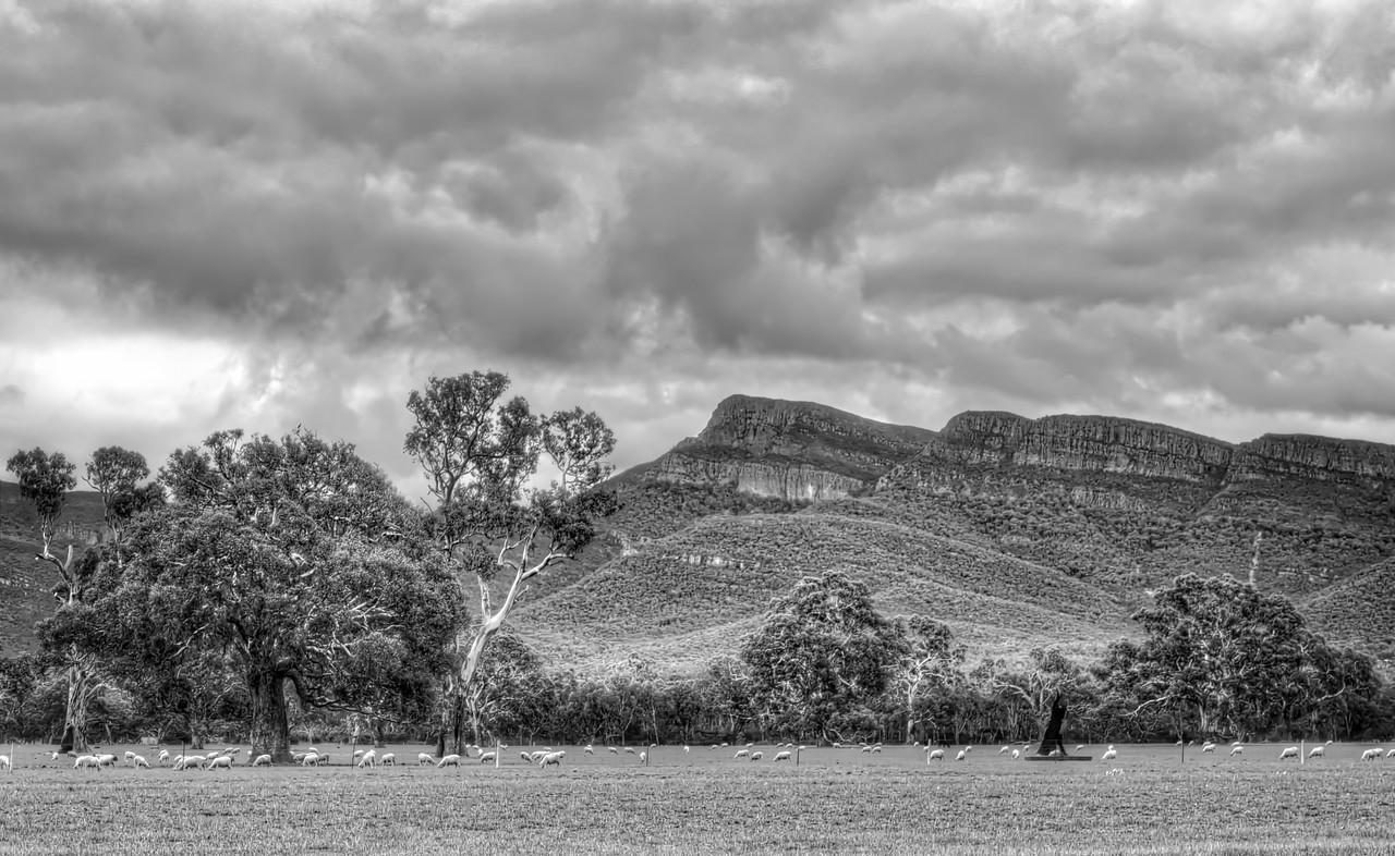 Majestic Mount William