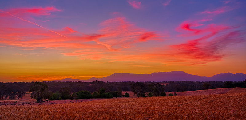 Sunset over the Harvest
