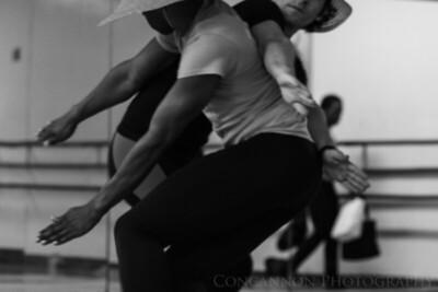 Through the Dancer's Eyes: 2016-2017