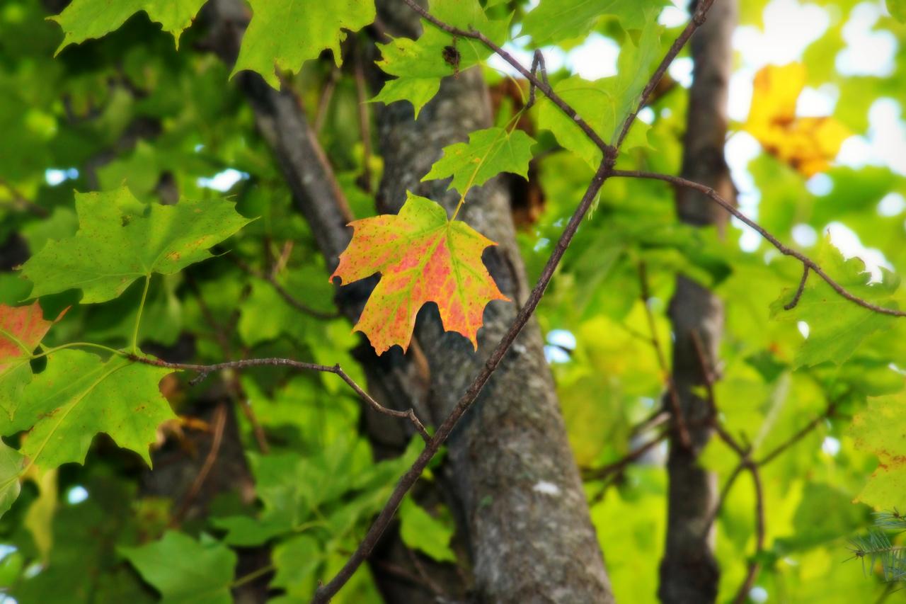 Seasonal Significance
