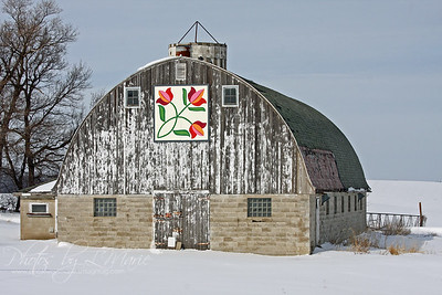 Carver County Quilt Barns