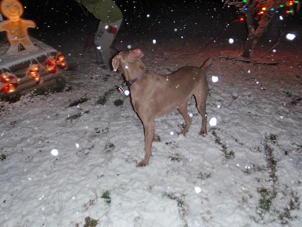 Yadi & Vino's 1st Snow Experience