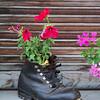 a boot makes a nice planter