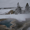 Blue Star Spring, Yellowstone