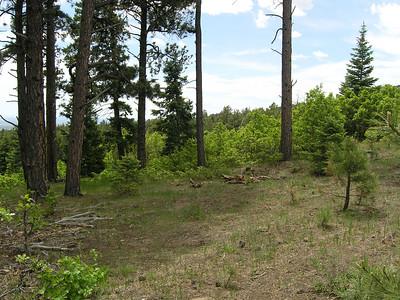 Camp Joseph (Jun 03, 2010)