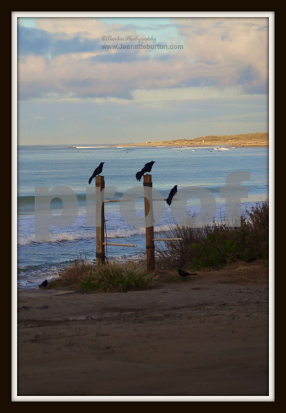 San Onofre Beach