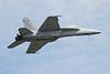 F-18 Hornet Image #4846