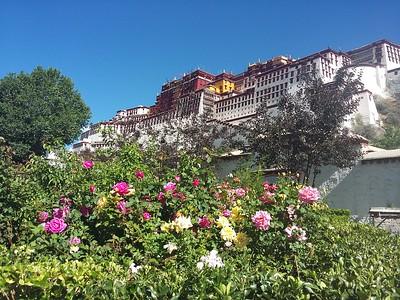 Тибет и Кайлас в июне 2017