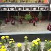 В Джоканге застали дебаты монахов. Здесь проходят ежегодные финальные дебаты лучших монахов из разных монастырей Тибета.
