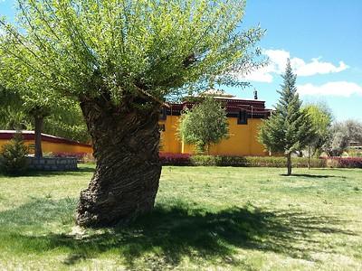 Утро в монастыре Самье.