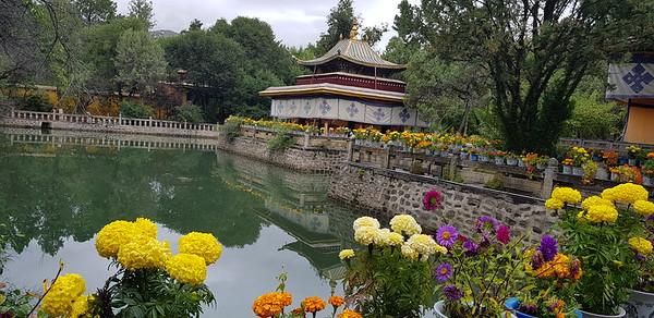 07.09.2019 Норбулинка - летний дворец Далай Ламы - райский уголок Лхасы. Как всегда здесь красиво и благостно.