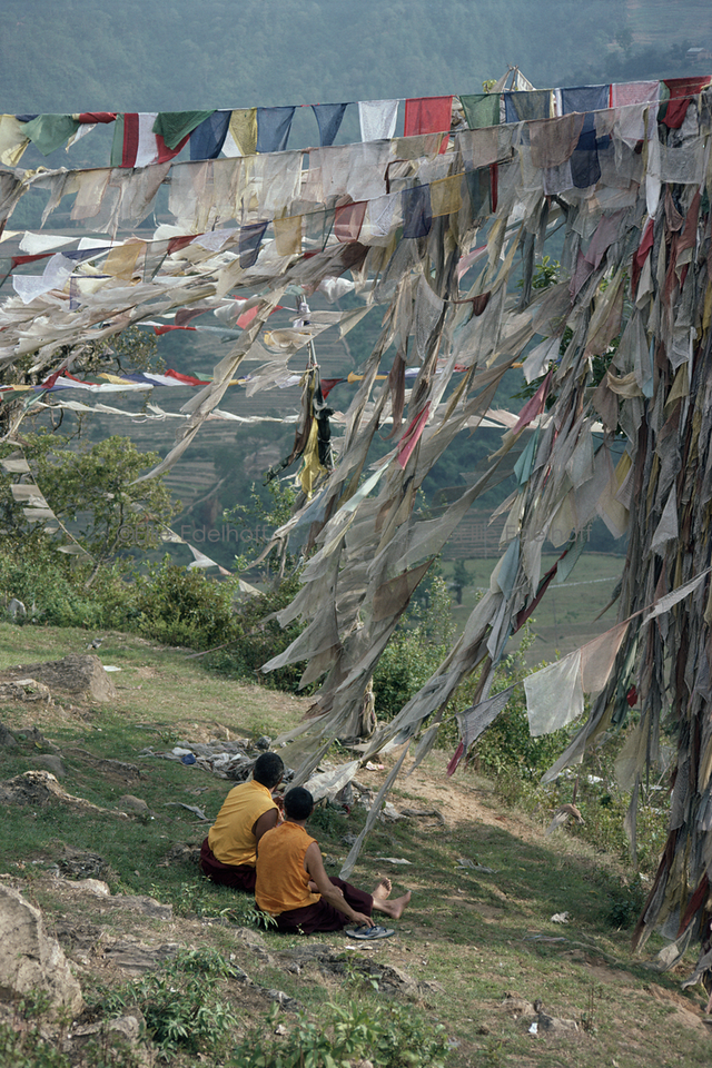 Surrounded by Prayers - Pharping, Nepal