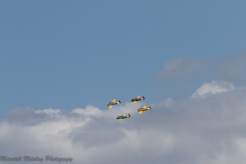 tico airshow don stamp-124