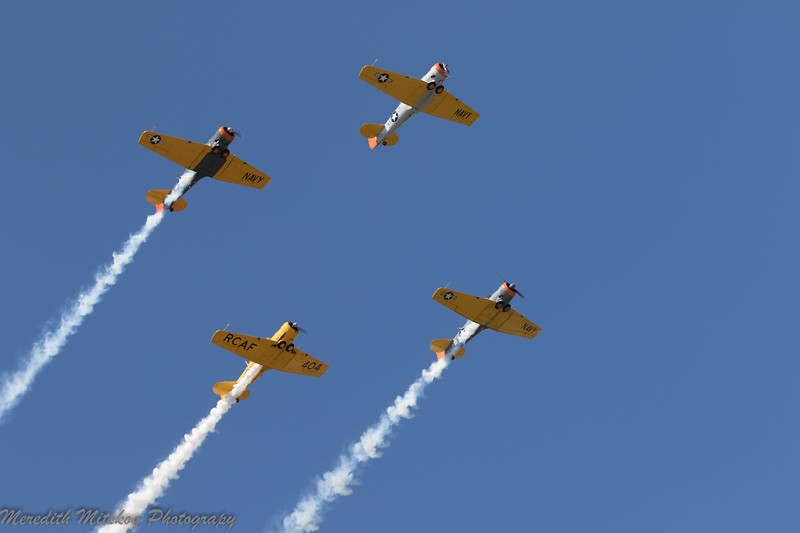 tico airshow don stamp-152