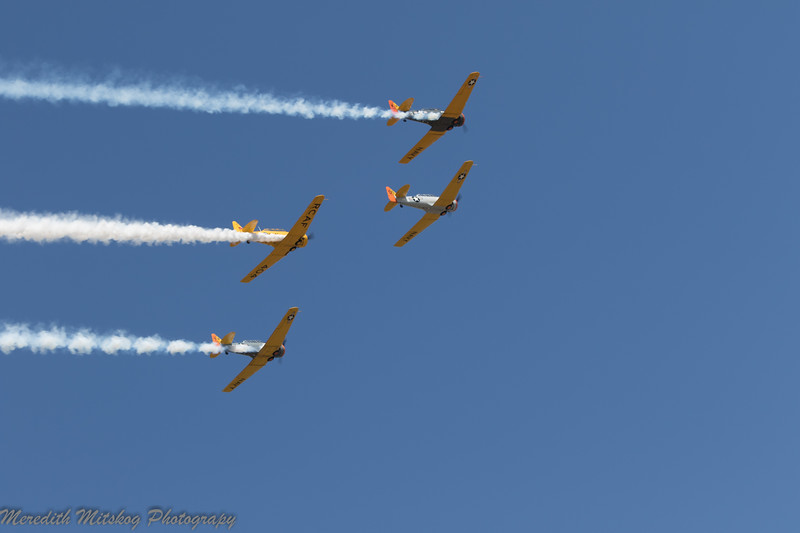 tico airshow don stamp-159