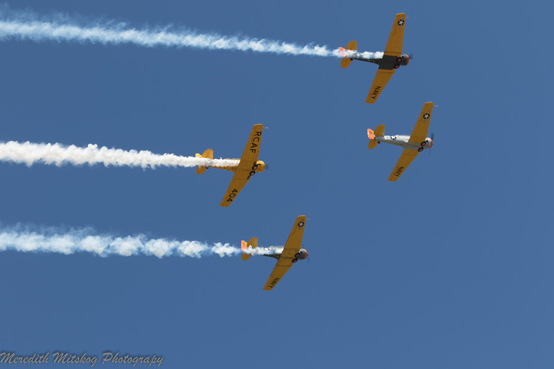tico airshow don stamp-49