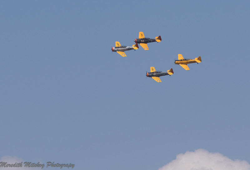 tico airshow don stamp-75
