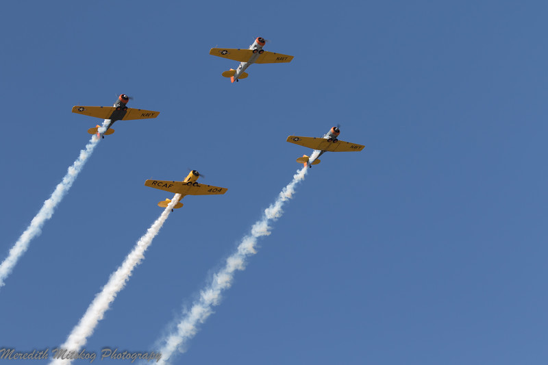 tico airshow don stamp-148