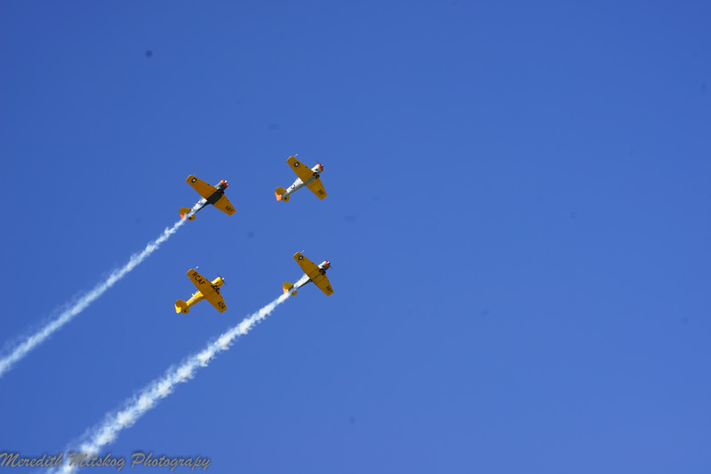 tico airshow don stamp-26