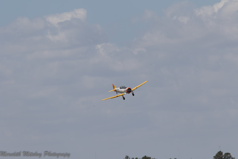 tico airshow don stamp-165