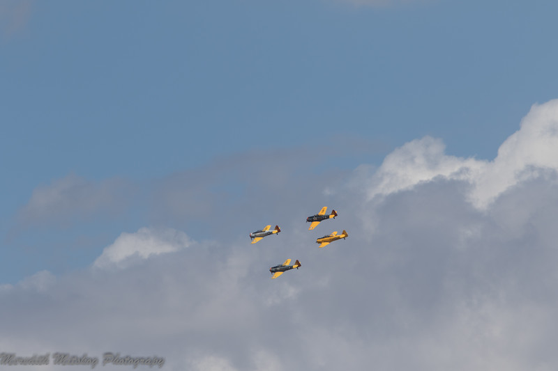 tico airshow don stamp-123