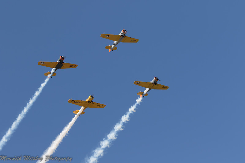 tico airshow don stamp-149