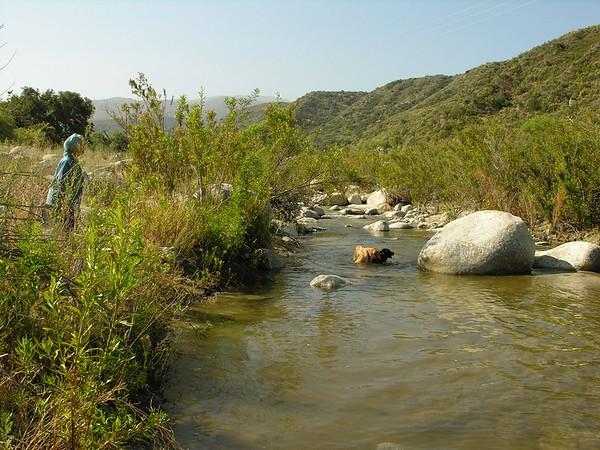 Tienshi - San Jacinto River with Doggies  - 08