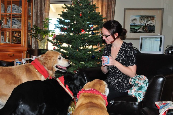Tienshi, Lexi, and Ginger - Christmas morning 2009 - 024