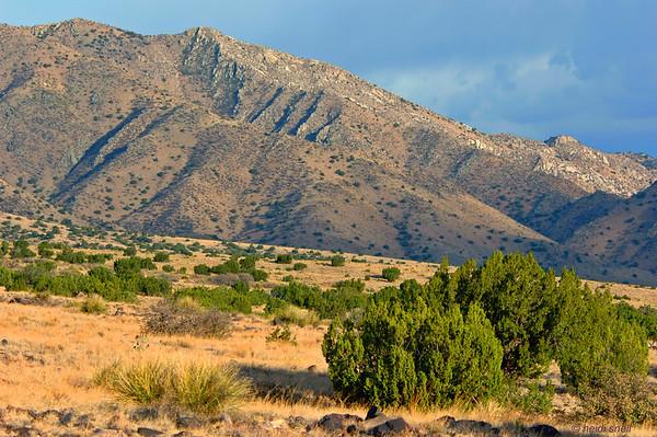Tierra Grande - New Mexico