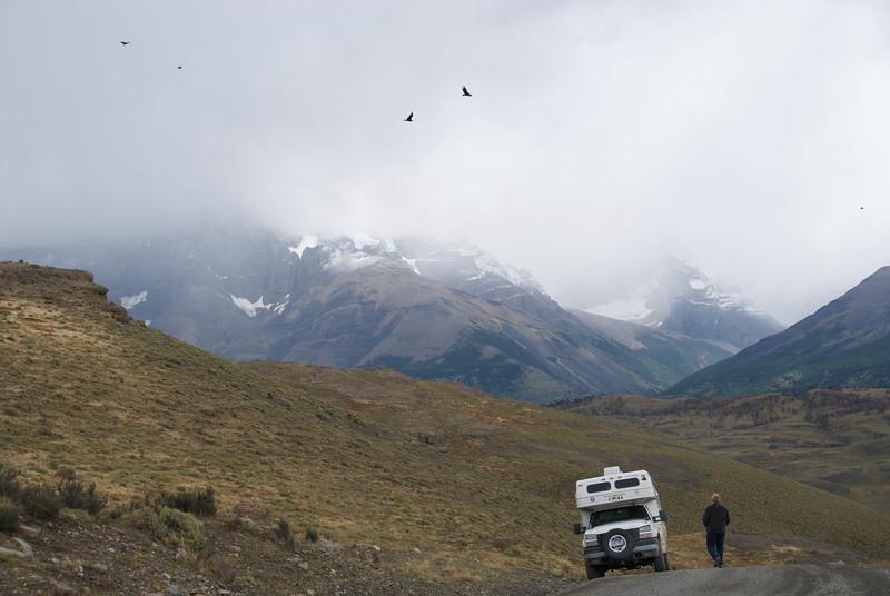 Condors in flight, Chile '09